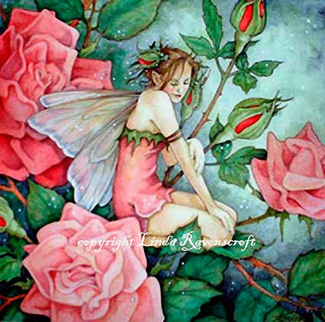 http://www.fairymagyk.co.uk/ecards/cards/1216115550linda_ravenscroft_rose_fairy.jpg