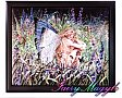 Sheila Wolk Framed Art Tile Field Of Dreams